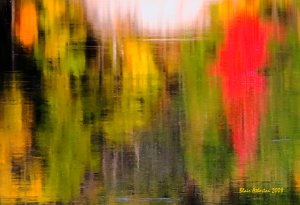 Autumn Reflections Copyright 2008 by Blair Atherton